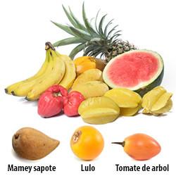 Frutas Latinas