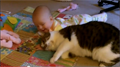Adorable Kitty Babysitter