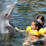 Dolphin Assisted Therapy for Kids with Autism